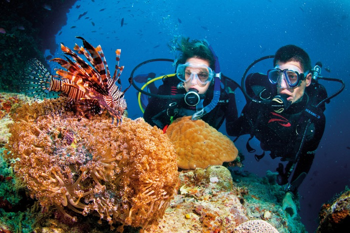 Cham Island snorkeling tour in Hoi An
